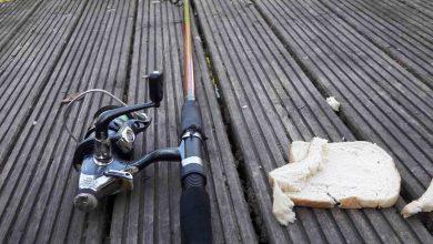 angeln mit Toastbrot