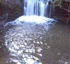 Gumpe nach Wasserfall
