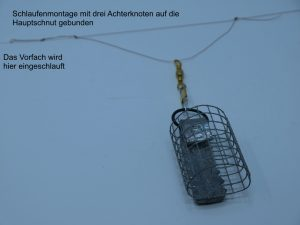 Schlaufenmontage für Futterkorb angeln