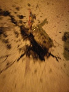 Tintenfisch tintenfleck