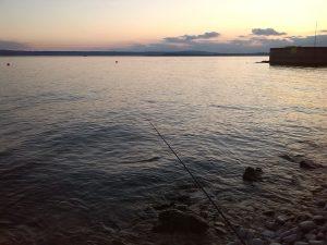 Spinnfischen am See